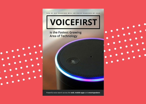 Sound Branch VoiceFirst guide